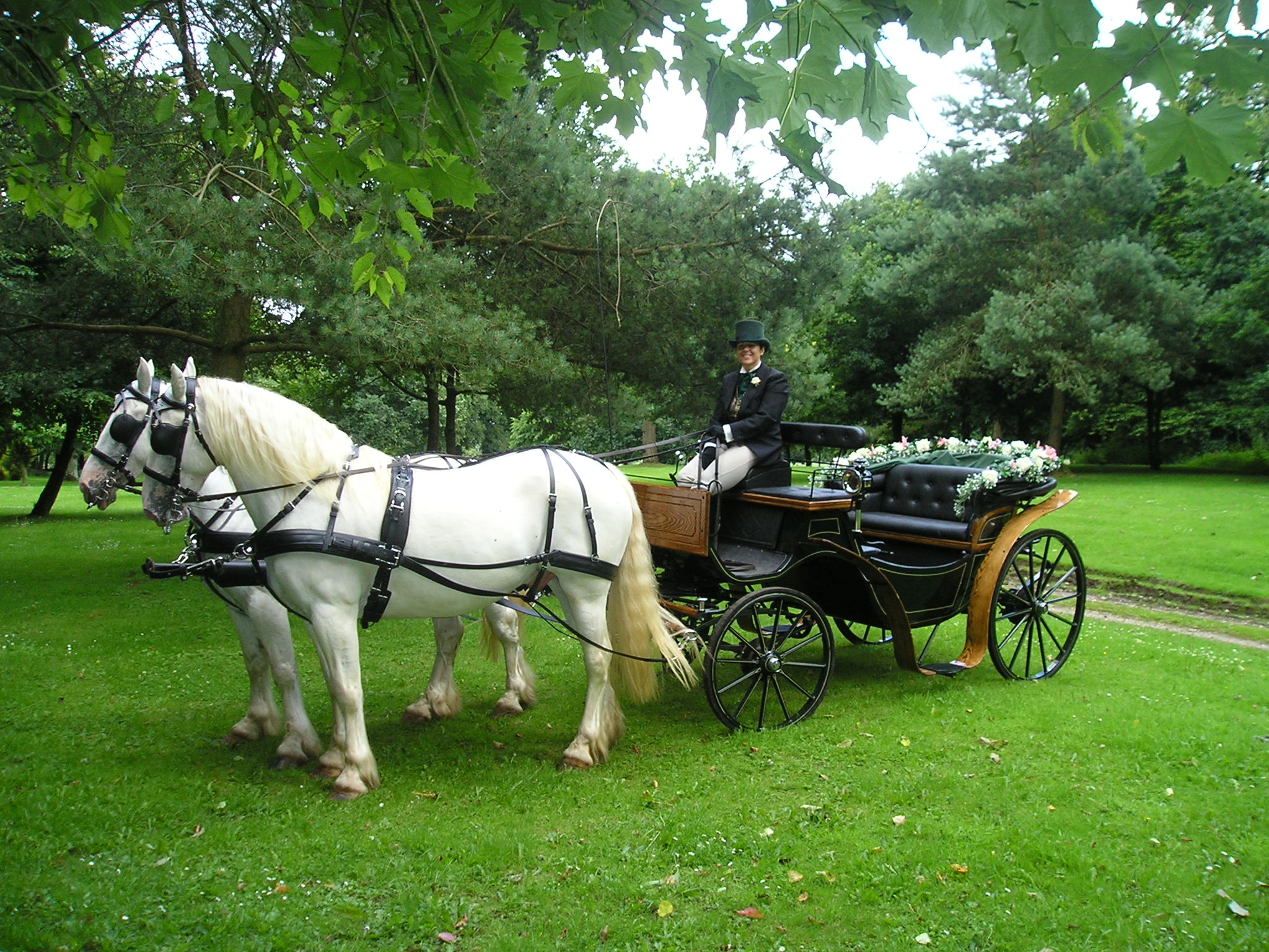 Wedding horse carriage the image kid for Car carriage