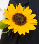 yellow_ boutonniere